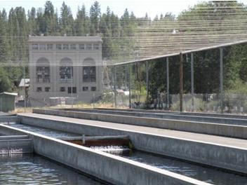 Crystal Lake Fish hatchery